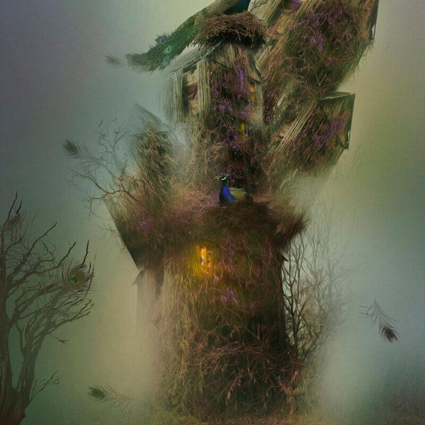 peacocks-katarzyna-wieczorek-artesklep-grafika